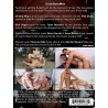 One in Hole DVD (Cocksure Men) (16424D)