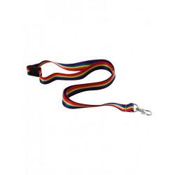 Rainbow Lanyard / Schlüsselband (T6324)
