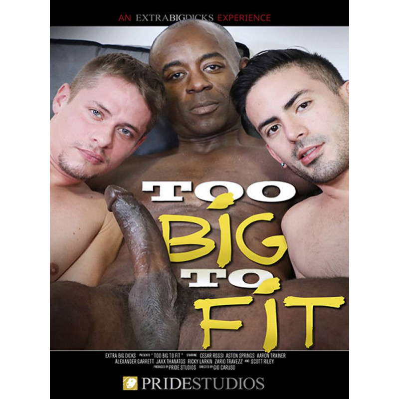 Too Big To Fit DVD (17831D)