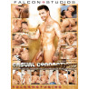 Casual Connections DVD (Falcon) (18106D)