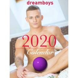 Dreamboys 2020 Calendar (M0996)