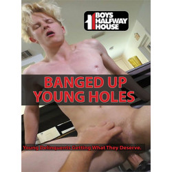 Banged Up Young Holes DVD (Boys Halfway House) (18420D)