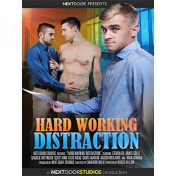 Hard Working Distraction DVD (Next Door Studios) (18371D)