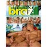 A Taste Of Brazil DVD (Falcon) (17095D)