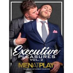 Executive Pleasures Vol. 2 DVD (Men At Play) (19139D)