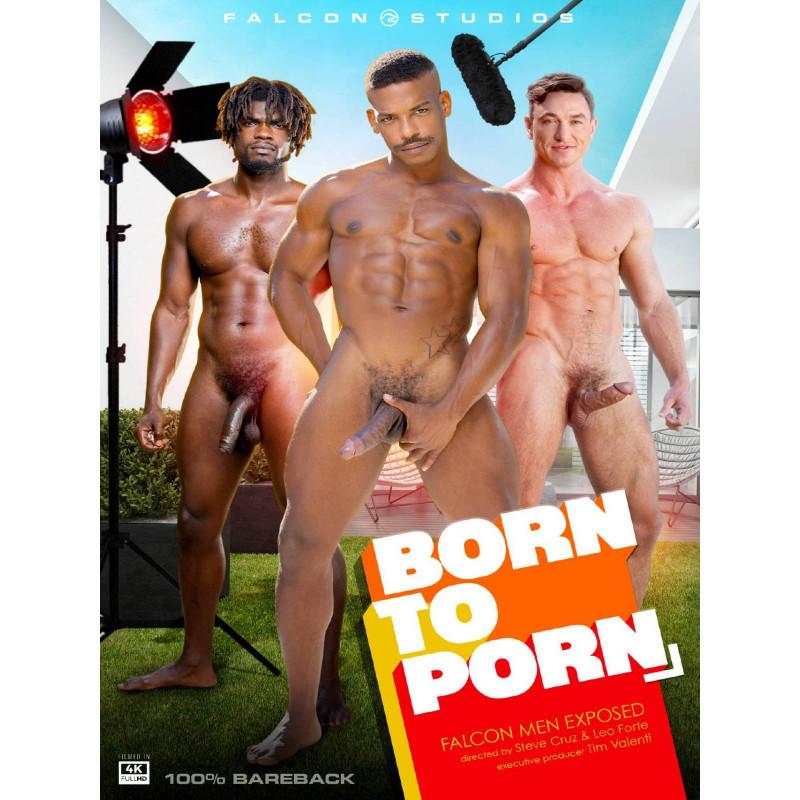 Born To Porn DVD (Falcon) (19644D)