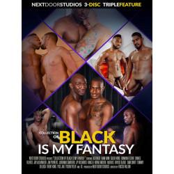 Black Is My Fantasy 3-DVD-Set (Next Door Studios) (20456D)