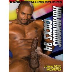Humongous Cocks 34 DVD (Raging Stallion) (13268D)