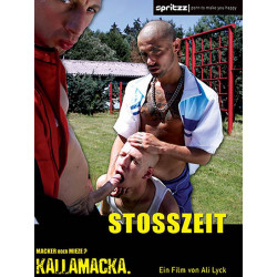 Stoßzeit (Rush Hour) DVD (Spritzz) (04965D)