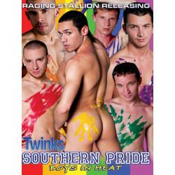 Southern Pride, Boys in Heat DVD (Raging Stallion) (05975D)