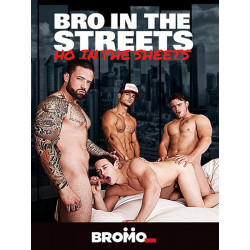 Bro In The Streets, Ho In The Sheets DVD (14723D)