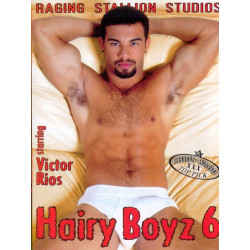 Hairy Boyz 06 DVD (Raging Stallion) (02769D)