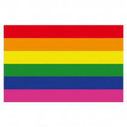 Rainbow Magnet Gay Pride flexible 4,5 x 7 cm