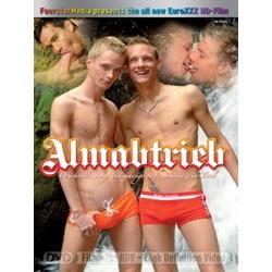 Almabtrieb DVD (Foerster Media) (06213D)