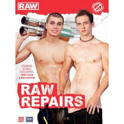 Raw Repairs DVD (Raw) (12301D)