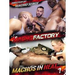 Machos In Heat #1 (Macho Factory) DVD (Macho Factory) (15833D)